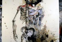 portrait_anatomie