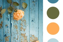 Paint colors and how to  / by Button Bird Designs