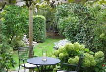 outdoor patio & deck. / Outdoor fun & practical garden ideas