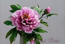 sugar flowera