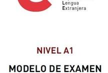 Español / todo sobre el maravilloso idioma Español....