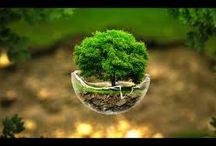 Creative Images Ravi Kumar Jha / Creative Images Ravi Kumar Jha