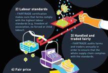 Fair Trade Life
