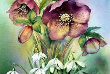 Flores para desenhar e colorir