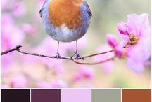Moje palety kolorów | Plasterek Cytryny