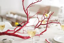 party decor / by Kristy Gammill