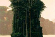 Nature / by La'Varro B.