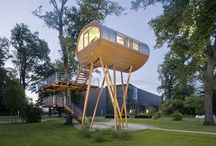 Architecture: Living in trees