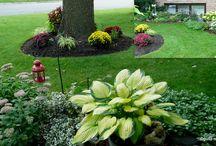 Gardening / by Sherika Eskridge