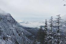 Winter's inspiration