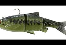 3D Bait Fish / Based on the 3D scan of an actual baitfish.