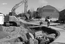 TLC Case Studies / Case Studies of residential and commercial projects completed by TLC Gardens LLC