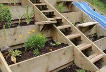 Huertas caseras y jardines