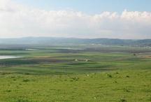 Israel 이스르엘 평원