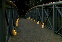 Magical Lights Marriage Proposal