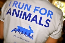be there voice <3 peta
