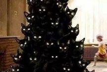 E' tempo di Natale