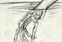 Mano Humano/Esqueleto
