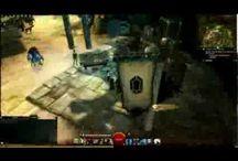 Guild Wars 2 Leveling