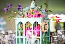 IDEAS FOR A WEDDING WITH CAGES