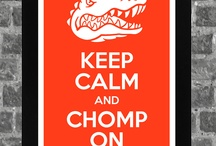 gators rule / I have been a   florida gator fan since  i was about 5 years old so many years of being a GATOR chomp chomp / by Monica Whalen