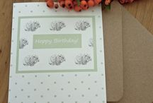 Animal Greetings Cards / Our greetings cards are perfect for a number of occasions and great for animal lovers!