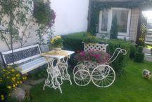 zahrada /  kytky na chalupe