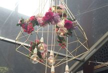 Lighting/decorations