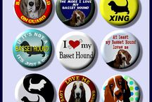 A Basset is an Asset / All things Basset Hound:) / by Mary Tipping