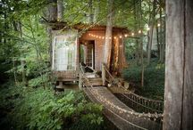 The Treehouse/Hide-away