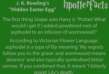 Harry Potter Forever :)