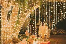 Esküvő Barackrózsa