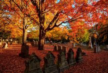 Cemeteries and Tombstones / by Kay Shive