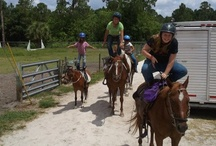 Tuesday Trailday! / Trailing, Observing, Laughing, Trotting and more!