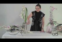 Floral demo video