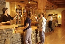 Virginia Wine Tasting / You can taste 10 different kinds of wines here. For a more intimate wine experience, schedule your group for our elite wine tasting.
