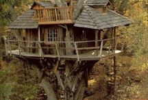 i want a treehouse / by greenleaf gallery