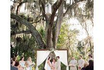 The Acre   Orlando, FL