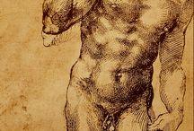 Creare col Segno / Studio Anatomico di un uomo di Michelangelo Buonarroti