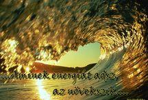 Üzenetek a homokban / Motiváció - pozitív gondolatok, bölcseségek - http://www.facebook.com/uzenetekma