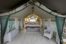 Tented Safaris South Africa / Our selection of tented safaris in the upmarket and luxury bracket