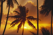 Sol, solar, solares.... calor e vida