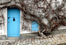 Doorway / by Jennifer Schorr