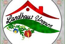 Landhaus Ungarn- Lux Cecília / A Landhaus Ungarn egy magyar-német nyelvű, több funkciót is magában foglaló ingatlan honlap, ahol a hagyományos ingatlanközvetítés keretén belül szeretném alkalmazni a külföldön már jól működő módszereket.