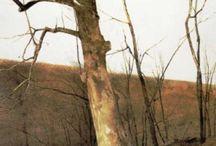 Andrew Wyeth Art PRINTS