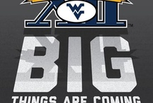 Let's GO Mountaineers!! / by Katie Verbil