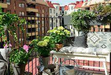 Balcony / Balcony