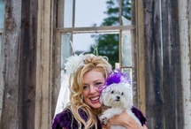 Pets @ Weddings