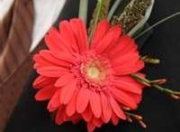 hy-vee dance flowers / by Elisa Kahler