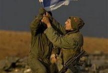 IDF / Tzva Hagana Le'Israel צבה ההגנה לישראל